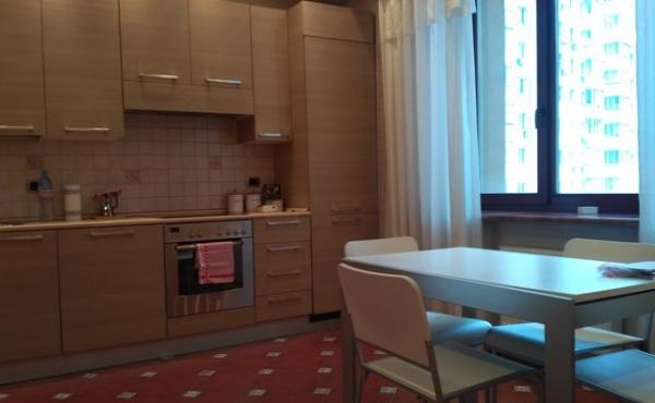 Ampio trilocale in affitto in condominio di categoria business