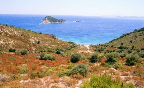 Земельный участок на 1-й линии моря на полуострове Халкидики